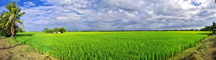 Clark New City Agri-Industrial Zone
